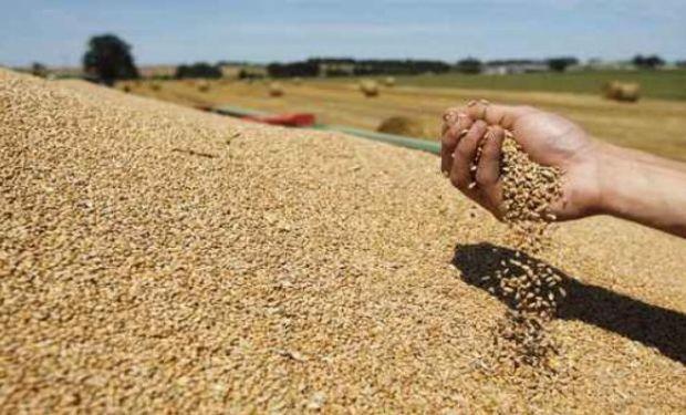 En el estimador mensual de actividad por sector de actividad económica el agro volvió a incidir de manera positiva.