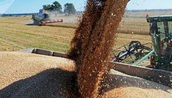 Ganancias: la AFIP ajustó el régimen de retención en el comercio de granos