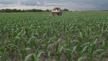 El costo de fertilizar es hasta un 25% mayor al de la campaña anterior