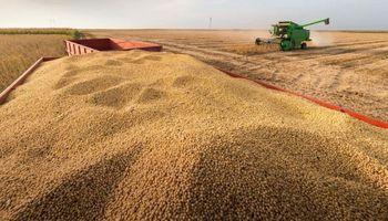 La cosecha de soja y maíz en Estados Unidos ingresó en la recta final