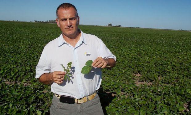 Rodrigo Bosch, gerente de Servicio Técnico de la semillera para el norte de Córdoba y el NOA.