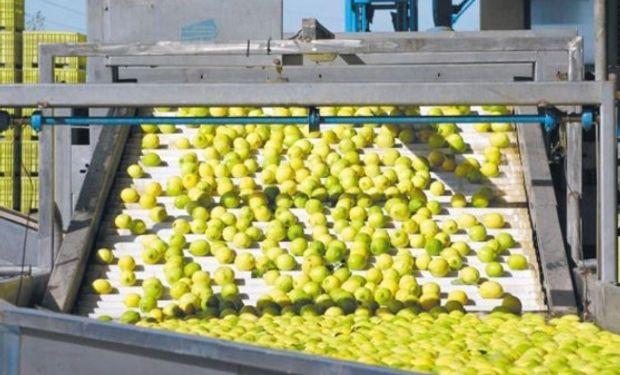 En Tucumán emplea más de 4.500 personas cada temporada.