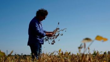 Las cinco preguntas que determinaron una merma en la confianza del productor argentino