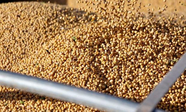 Expectativas de que China retome compras de soja impulsan los precios en Chicago.