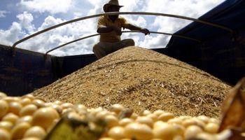 Efecto temporal: Paraguay exportará más soja que Argentina