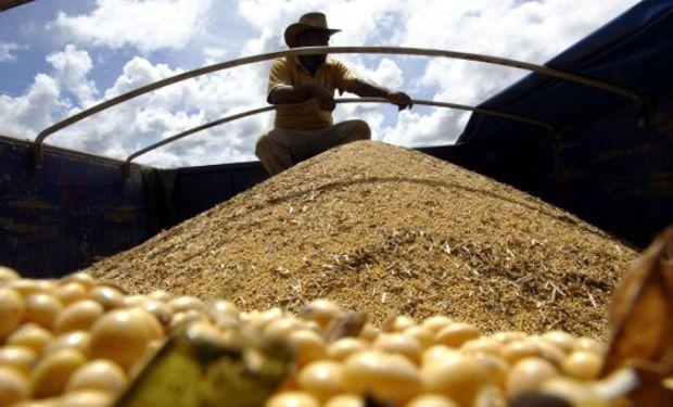 Paraguay planea duplicar la exportación de soja en los próximos 10 años con una mayor superficie sembrada.