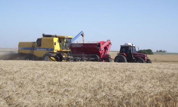 El mercado esperaba mayores problemas logísticos en cosecha que repercutieran en una presión sobre los precios disponibles.