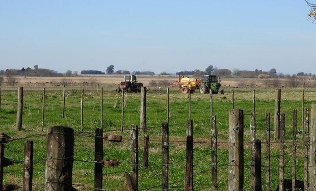 Baja actividad en el mercado inmobiliario rural.