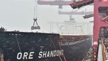 China elimina aranceles a la importación de harinas alternativas a la de soja