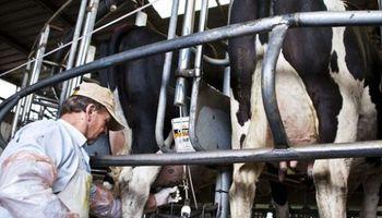 Los cuatro gráficos que muestran la preocupante situación del sector lechero