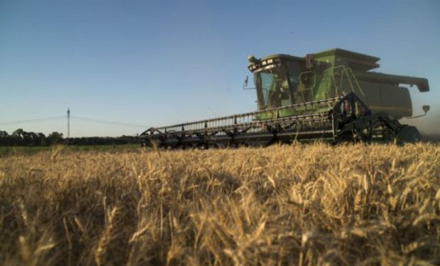 Datos oficiales sobre el avance de la cosecha.