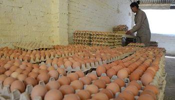 El consumo de huevos en Argentina cortó la racha alcista en 2018