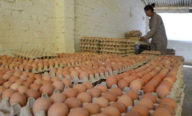 Según los últimos registros de la cámara, que miden el consumo en el país en 2018, los argentinos comieron al año 270 huevos per cápita.