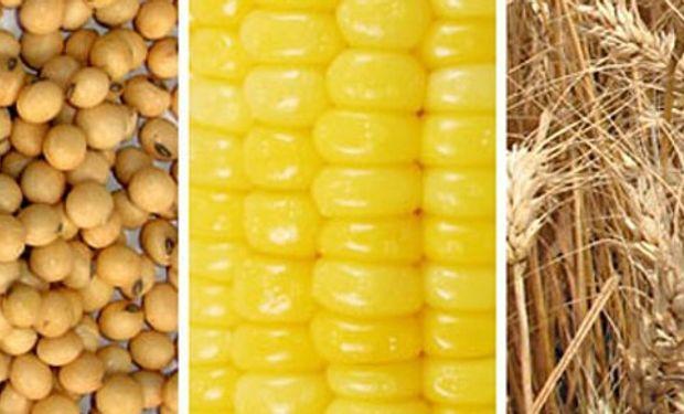 Lanworth reduce pronóstico de producción mundial de soja, eleva el de maíz