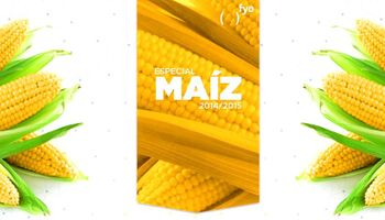 Altos costos, bajos precios, poco maíz