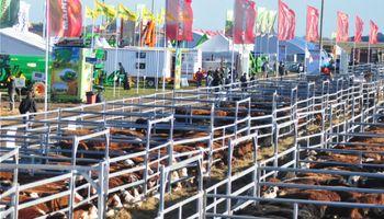 Exposición, juras, remates, talleres y charlas en el sector ganadero de AgroActiva