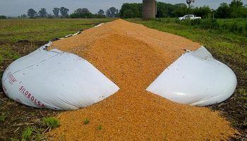 Destruyen un silo bolsa con maíz en Cañuelas