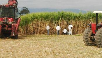 Nuevo concepto tecnológico para la aplicación de herbicidas en el cultivo de caña