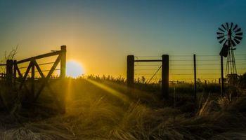 Reforma tributaria: los 4 aspectos que más impactan en el sector agropecuario