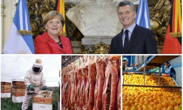 El mercado agroalimentario alemán como destino de exportaciones de nuestro país está concentrado en pocos productos.