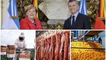 ¿Cuál es el potencial del mercado alemán para los productos del campo argentino?