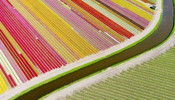 Las mejores imágenes aéreas de campos