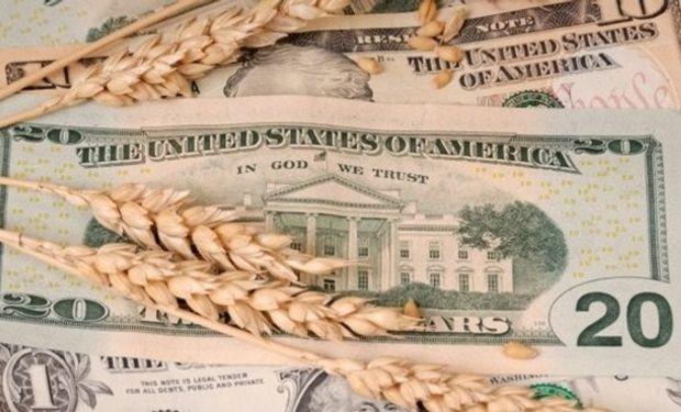 Posibles impactos sobre la actividad agrícola, ganadera y lechera.
