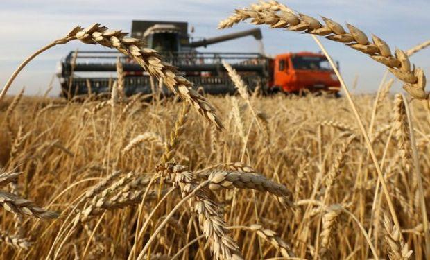 La actual sede del mundial es el 5º productor mundial de trigo y pelea el primer puesto como exportador del cereal con EE.UU.