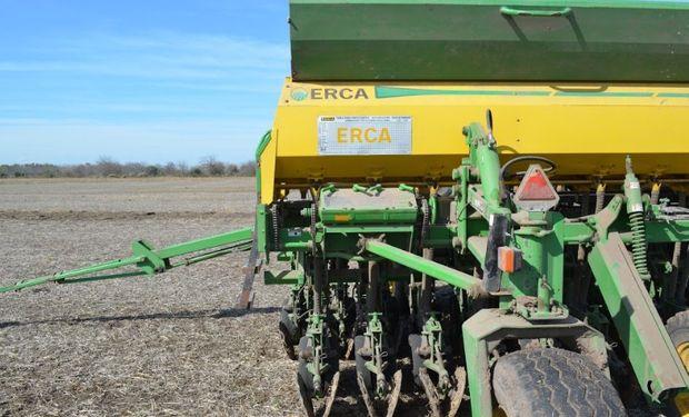 La siembra de trigo cubrió el 49 % de las 6.100.000 hectáreas proyectadas para la campaña en curso.