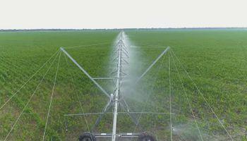 Desarrollo de la NASA permitirá saber cuanta agua demandan las plantas