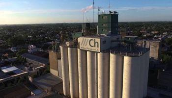 Un solo grupo controla el 40% de las exportaciones argentinas de harina de trigo