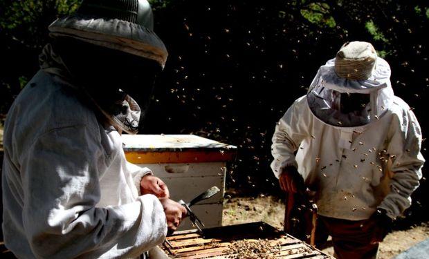 Para acceder, el productor apícola debe realizar la adhesión al sistema a través de la página de la AFIP.