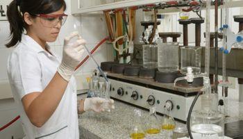 El bioaceite extraído de la cáscara de soja podría combatir bacterias y enfermedades