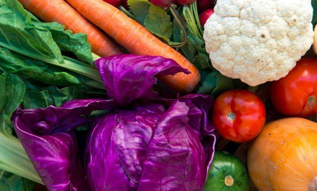 Se hizo un llamado a la reflexión a todos los actores económicos respecto de la importancia de fortalecer la seguridad alimentaria y nutricional.