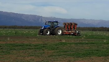 ¿Es posible hacer maíz en San Luis con rendimientos de zona núcleo?