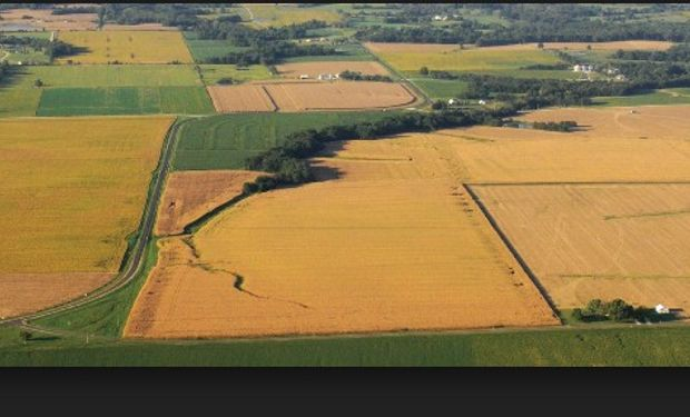 Se prevén rendimientos de soja y maíz menores en EE.UU.