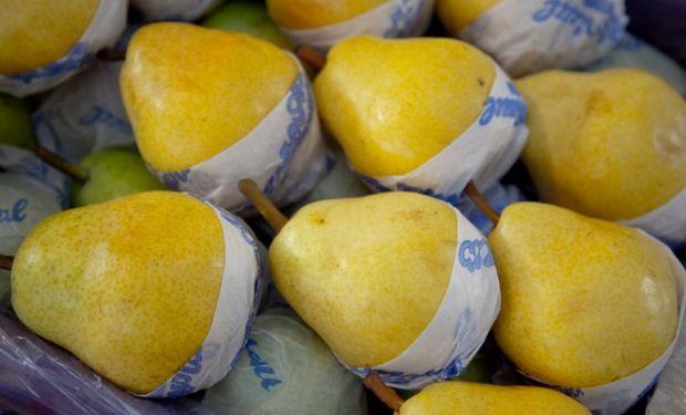 Buscan aprovechar la gran oportunidad para las exportaciones de fruta argentina.