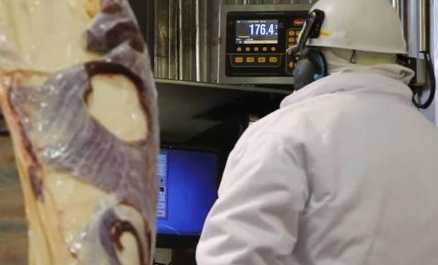 Un video de Agroindustria explica el funcionamiento de los Controladores Electrónicos de Faena (CEF).