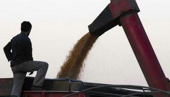 Secuestraron más de 1.000 toneladas de granos