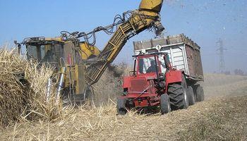 Presentaron un nuevo biocombustible a base de desechos de caña de azúcar