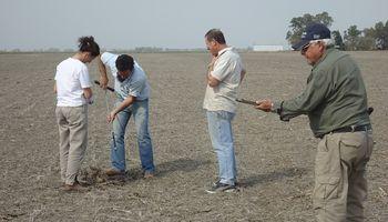 Apenas el 16% de los productores en Argentina realizan muestreo de suelos