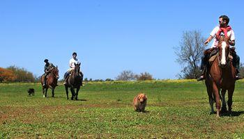 El turismo rural presentó su estrategia para recuperar la actividad poscuarentena