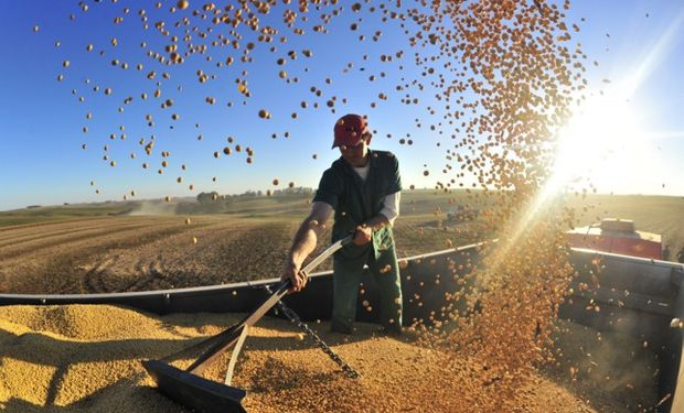 Funcionarios del Banco Nación Argentina esperan que el campo modifique sus expectativas de siembra.