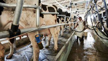El crecimiento de la oferta mundial de leche se ha estancado