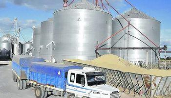 Sector cerealero, frente a una importante desindustrialización
