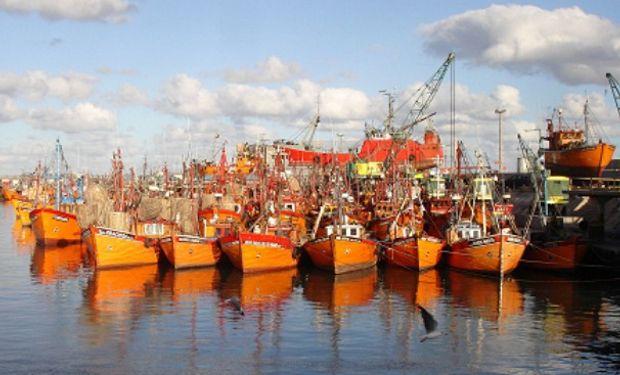 Pesca: caen las capturas, pero surgen negocios