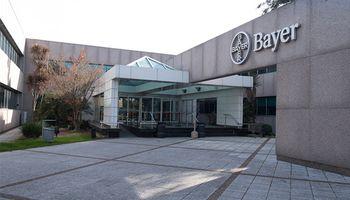 Bayer seguirá invirtiendo fuerte en agricultura