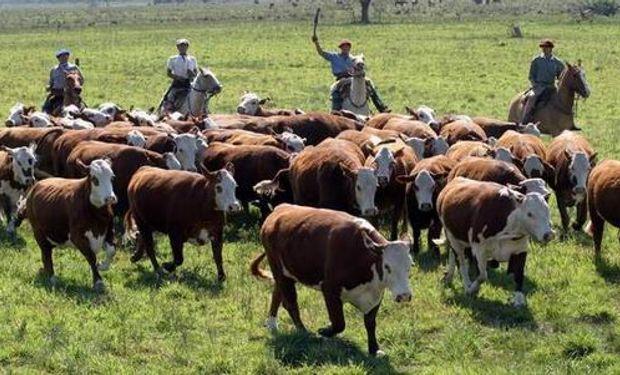 Esta situación generó dudas en algunos empleadores rurales.
