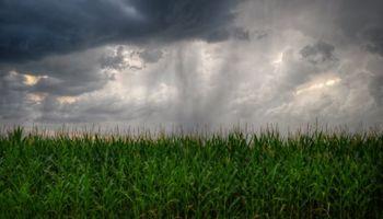 Coberturas climáticas: un repaso por las distintas alternativas