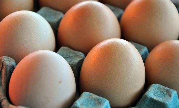 Del 10 al 14 de octubre, la Semana Mundial del Huevo.